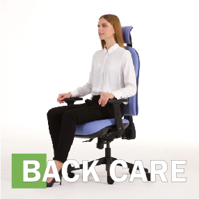 Back Care Collection